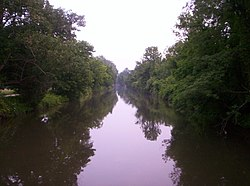 Trees along the Delaware and Raritan Canal.jpg