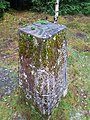 Trig Point in Cot-Town Wood.jpg