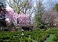 Tudor Place in April (17707892426).jpg