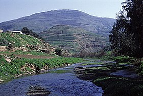 Tulul adh-Dhahab and Jabbok in spring.jpg