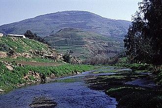Jerash Governorate - Zarqa River passing through Jerash governorate