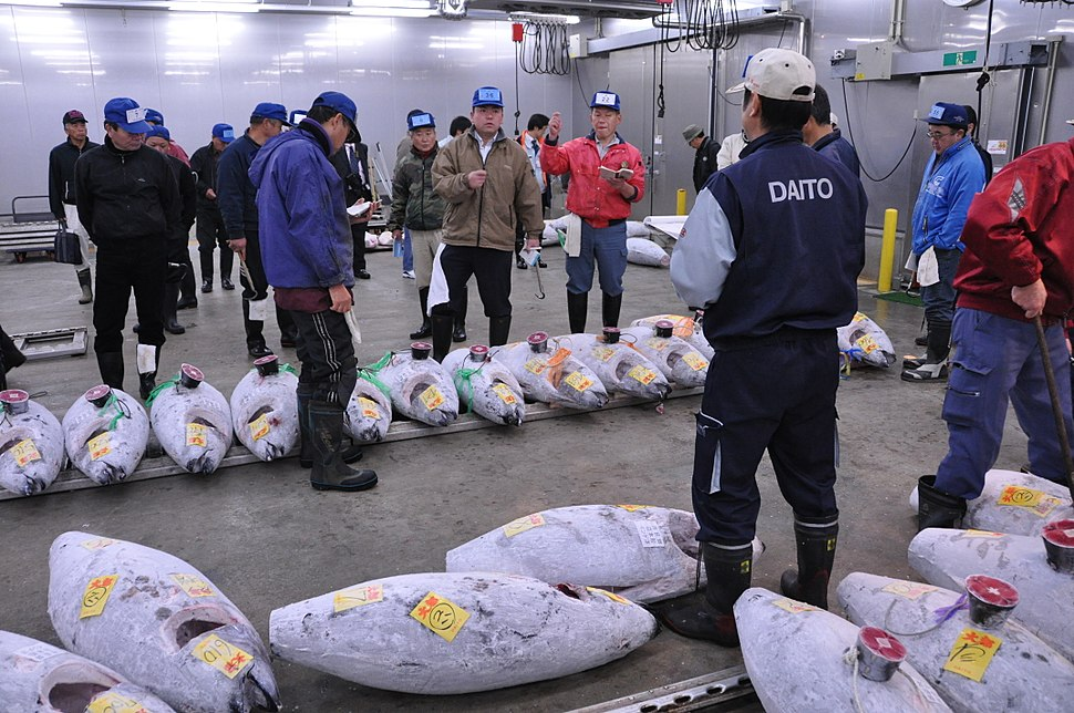 Tuna auction at Narita Wholesale Market