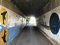 Tunnel under West Kyushu Line on west side of Tabira-Hiradoguchi Station 2.jpg