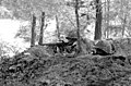 Two combat ready members of the 3rd Light Anti-Aircraft Missile Battalion are in a foxhole with their M-16A1 rifles during a field exercise - DPLA - 48f3fc663c685db2f5db2bc8bcf7d604.jpeg
