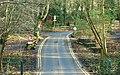 Two roads, Crawfordsburn Country Park - geograph.org.uk - 1159977.jpg