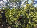 U.S. Marines, Sailors explore Thailand during port visit 150610-M-GC438-007.jpg