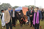 USAID and Punjab Livestock and Dairy Department Launch the First Ever Livestock Herd Book in Punjab (26682103919).jpg