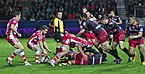 USO-Gloucester Rugby - 20141025 - Ruck 6.jpg