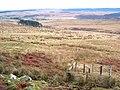 Valley of the Bellshiel Burn - geograph.org.uk - 655754.jpg