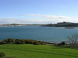 View across Strangford Lough from Audley's Castle - geograph.org.uk - 240497.jpg