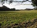 View across the fields towards Betteshanger - geograph.org.uk - 678931.jpg