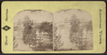 View at Saratoga, from Robert N. Dennis collection of stereoscopic views 10.png