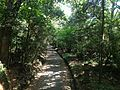 View from Bridge on sando between Upper Shrine and Lower Shrine of Usa Shrine 1.JPG