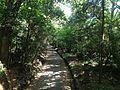 View from Bridge on sando between Upper Shrine and Lower Shrine of Usa Shrine 1.JPG