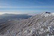 Vihorlat (v zime) 033.jpg