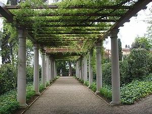 střecha porostlá rostlinami