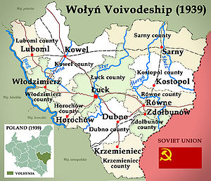 Wołyń Voivodeship (1921–1939) - Map of Wołyń Voivodeship with Counties