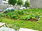 Vue Le-Nôtre-2015-07-30.jpg