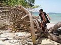 Wandoor Beach Andaman 4160219.JPG