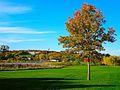 Warner Park during Autumn - panoramio.jpg