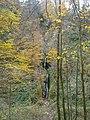 Waterval van Reinhardstein.jpg