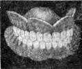 WeirdTalesv36n1pg127 Hand Carved False Teeth.png