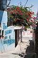 West Bank-77.jpg
