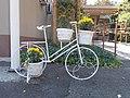 White bicycle as planter, Town Hall, 2020 Albertirsa.jpg