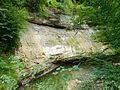 WikiProjekt Landstreicher Geotop Scheidegger Wasserfälle 12.jpg
