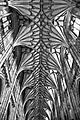 Winchester cathedral (9673348299).jpg
