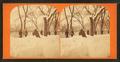 Winter scene, by John B. Heywood.png