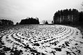 Wintercake (24624780952).jpg