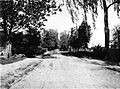 Wola Rafalowska village,country road,ca 1915.jpg