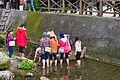 Wongwt 馬太鞍濕地公園 (16758784282).jpg