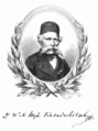 Wuk Karadschitsch 1865.png