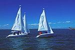 Yacht Club Sailboat Regatta DVIDS233601.jpg