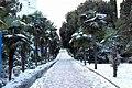 Yalta winter 3.jpeg