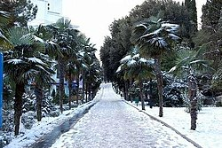 Yalta winter 3.jpeg