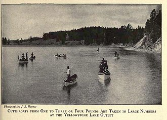 Angling in Yellowstone National Park - Cutthroat trout fishing at the outlet of Yellowstone Lake circa 1916