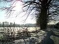 Zima w Józefowie - panoramio.jpg