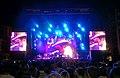 "Zucchero - ""Chocabeck Tour 2011″ (8151026528).jpg"