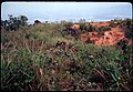 """Oklahoma Hills"", April 1969 - 50065926346.jpg"