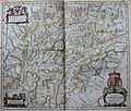 """Tyrolis comitatus"" (22070560050).jpg"