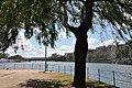 Île aux Cygnes Paris 15e 002.JPG