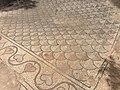 Ρωμαϊκό ψηφιδωτό, Ζάππειο - panoramio (2).jpg
