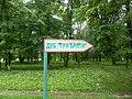 Багатовіковий дуб «Три брати», Прилуцький район, сел. Линовиця 74-241-5027 06.jpg