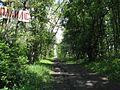 Дендрологічний парк 14.jpg