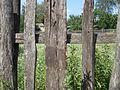 Забор - panoramio (80).jpg
