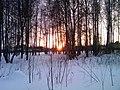 Закат в Парке им. 50-летия Октября - panoramio.jpg