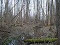 К ВПП пришлось пробираться через болото - panoramio.jpg